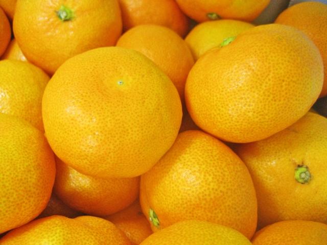 Mika/Satsuma orange