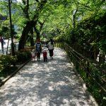 Ikedayama – A suburban oasis in central Tokyo