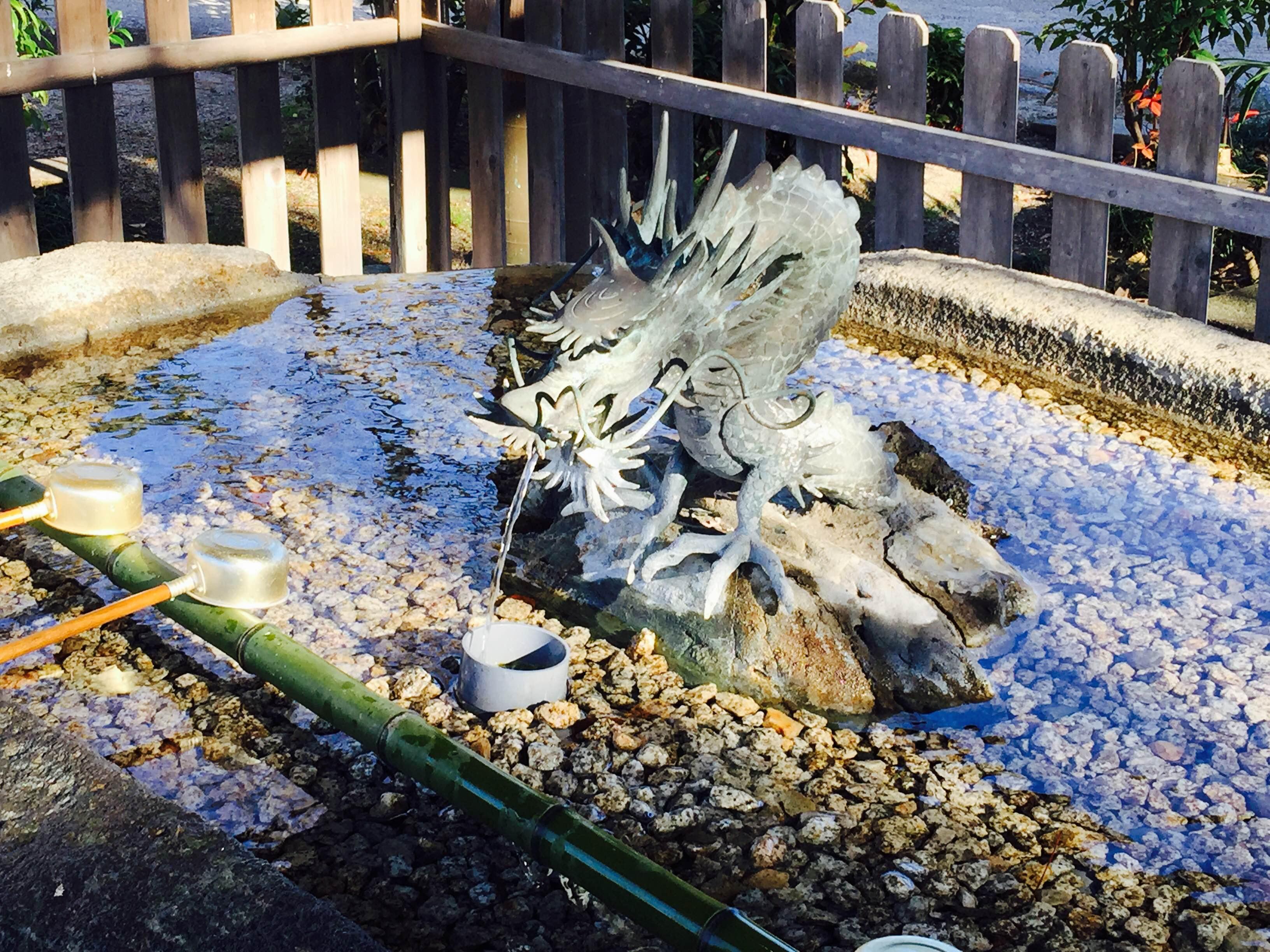 Hatsumode Toride Shrine temizuya