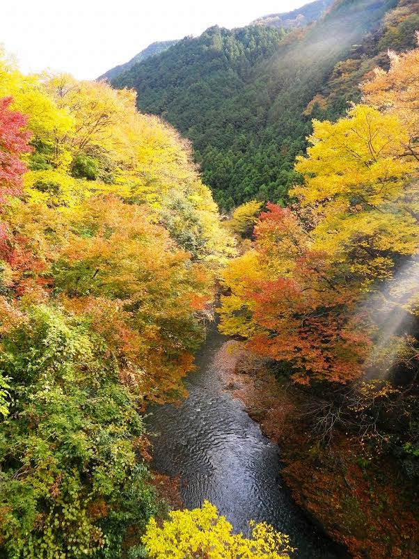 Arigawa Gorge in Autumn