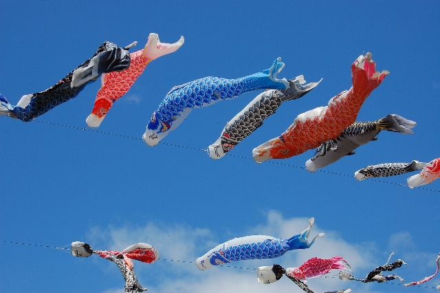 Flying Carps on Children's Day