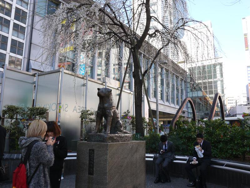 Hachikō statue (Shibuya)