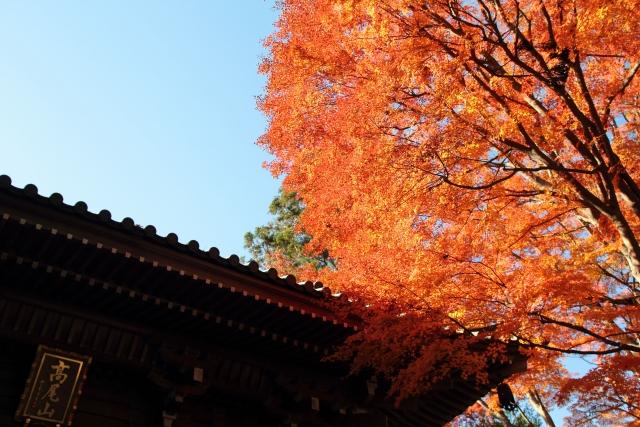 Mt. Takao in Autumn