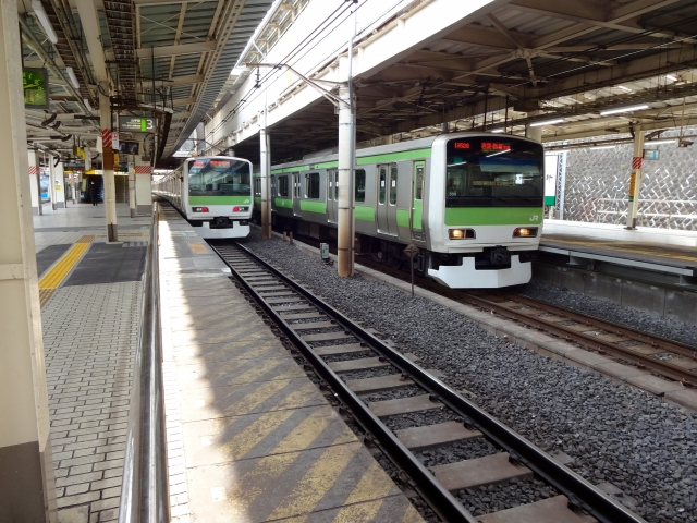 Rail Travel (Yamanote Line)