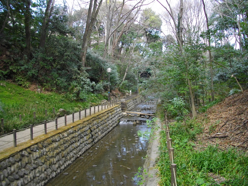 Todoroki Gorge (等々力渓谷)