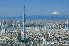 Photo_TokyoSkyTree