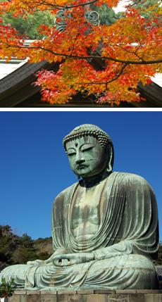 Photos_Kamakura_Koyo_Drive