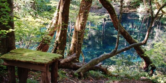 WorldHeritage_ShirakamiSanchi