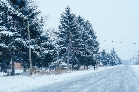 hokkaido sub arctic climate (Mobile)